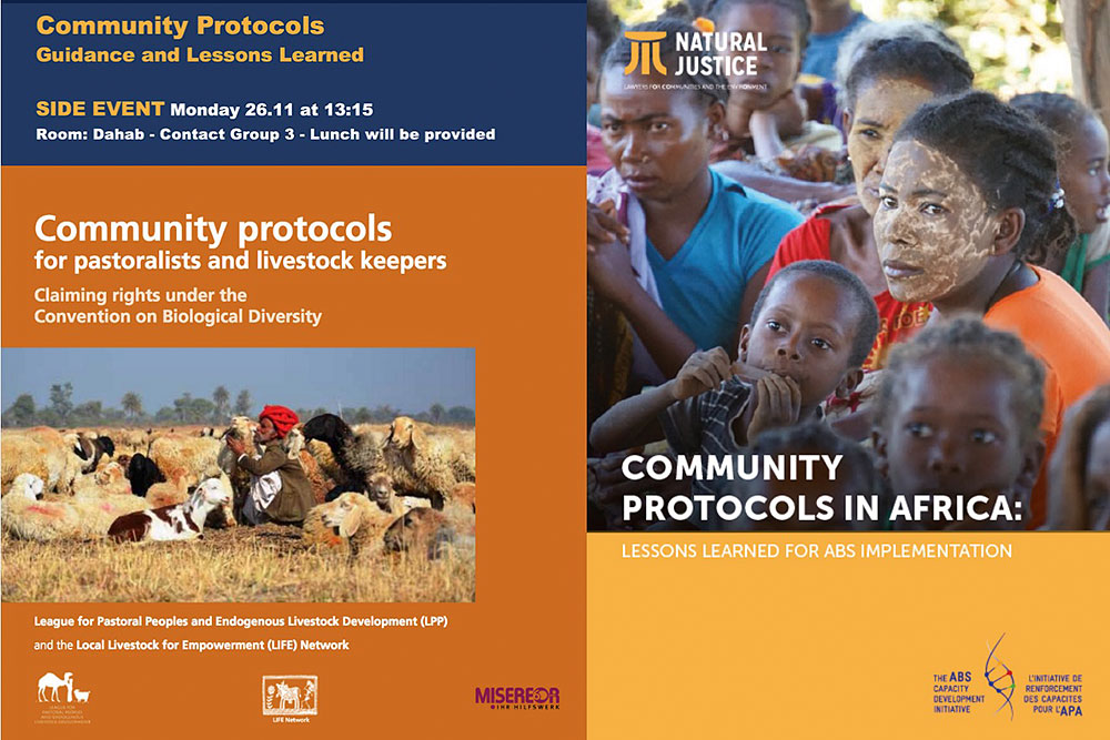 aad9261151885 Community Protocols – Guidance and Lessons